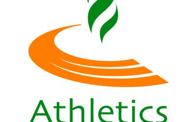 Athletics Ireland seeks a Director of Competitions