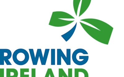 VACANCY: Rowing Ireland are recruiting for a Club Support Officer