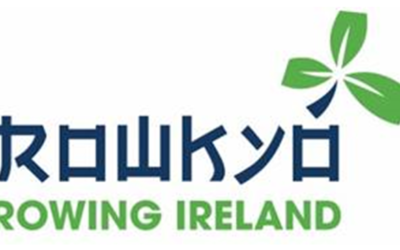 Rowing Ireland has launched ROWKYO in preparation for the 2020 Olympics.