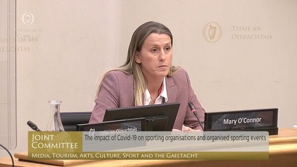 Irish Examiner on Joint Committee: Budget 2021 a 'watershed moment' as Irish sport suffers losses of 70%